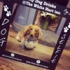 Printed Dog Selfie Free-Standing Frame